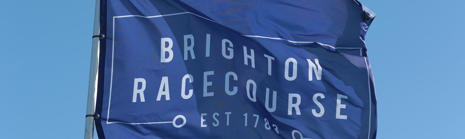 The blue flag of Brighton Racecourse.